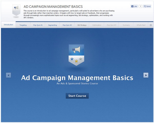 Ad Campaign Management Basics - Introduction
