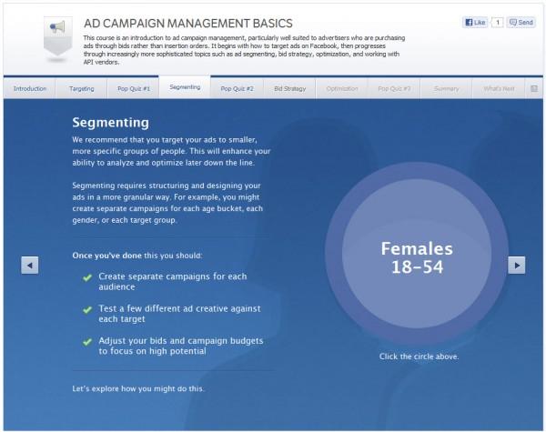 Ad Campaign Management Basics - Segmenting