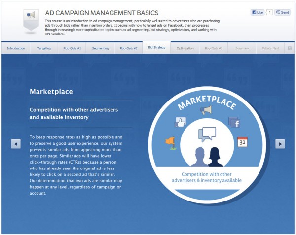 Ad Campaign Management Basics - Bid Strategy
