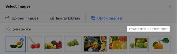 Werbeanzeigenmanager mit integrierter Shutterstock.com-API