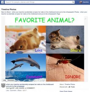 """Beispiel für """"Like-Baiting"""" (Quelle: Facebook)"""