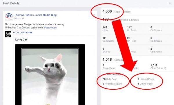 Insights des überlangen Cat-Posting