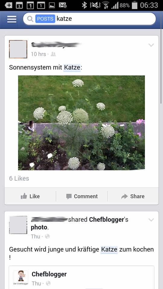 "Suchresultate ""Facebook Post Search"""