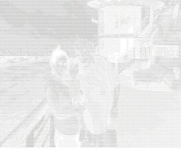 gleiches Bild als s/w ASCII