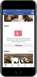 """""""leerer"""" Musik-Bereich im Profil (Quelle: Facebook)"""