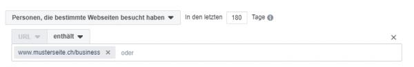 Beispiel einer Website Custom Audience-Definition