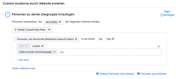 Beispiel einer Website Custom Audience (ohne UTM-Parameter)