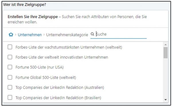 Targeting-Option Unternehmenskategorie (Quelle: LinkedIn)