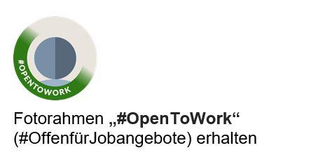 Fotorahmen für Jobsuchende (Quelle: LinkedIn)